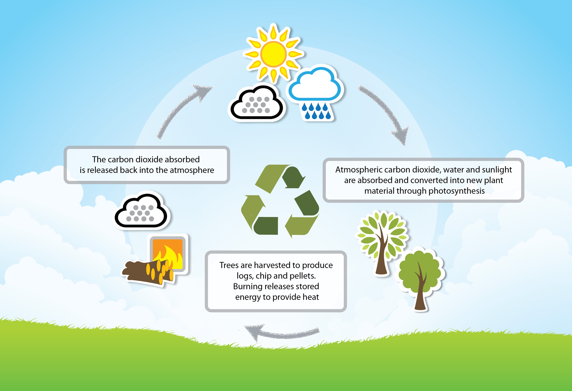 Biomass Renewable Energy ~ Biomass a renewable energy source or danger to the